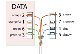 Network Faceplate Wiring Diagram - Wiring Diagram Completed on network cable wiring diagram, network data wiring diagram, network switch wiring diagram, network server wiring diagram, network routers diagram,